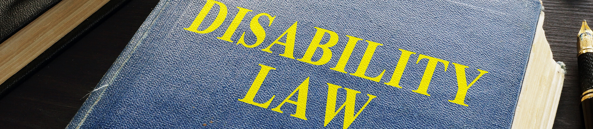 Disability law book